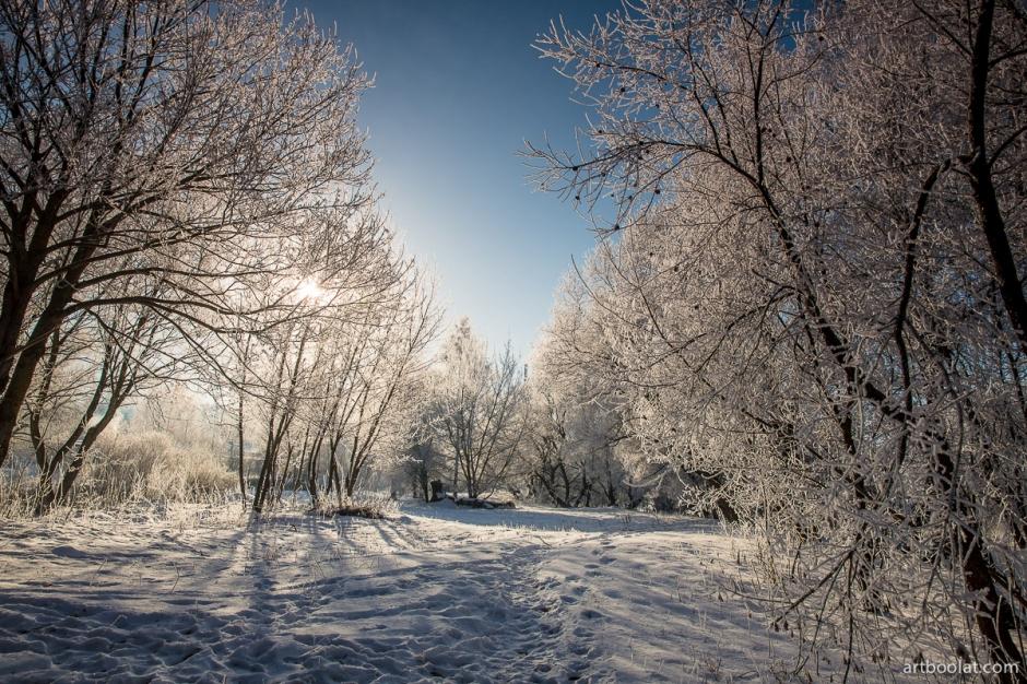 зимний пейзаж минский район беларусь река свислочь морозный день в беларуси солнечная зимняя погода красивые фотографии пейзаж фотограф булат прекрасная хорошая зимняя погода в минском районе