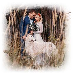 Смотреть портфолио свадебного фотографа в Минске